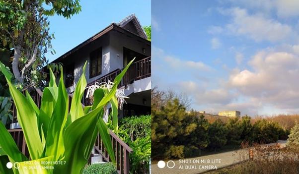 Сравнение фотоснимков, снятых на Редми Ноут 7 и Ми 8 Лайт